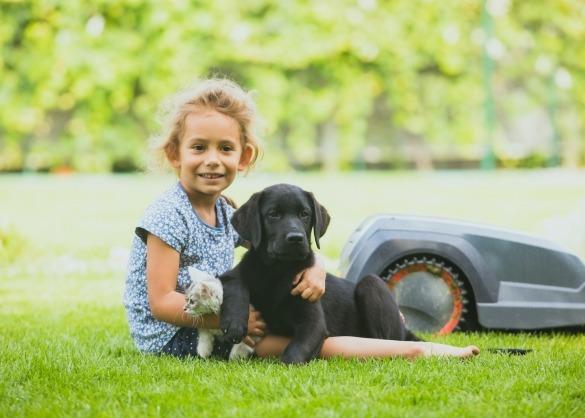 Meisje met kat en hond op gazon naast robotmaaier