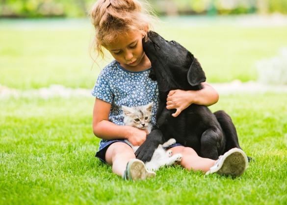 Kind knuffelt met puppy en kitten