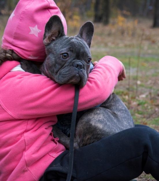 Franse bulldog en kind knuffelen