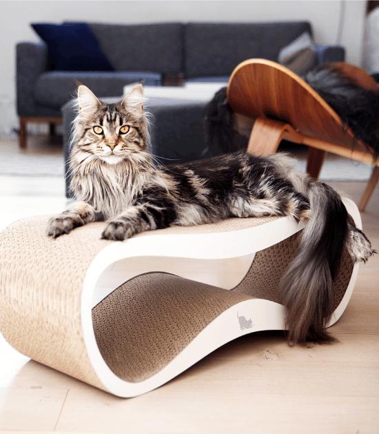 Kattendesign MyKotty