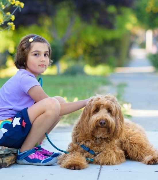 Kind zit op stoep met labradoodle