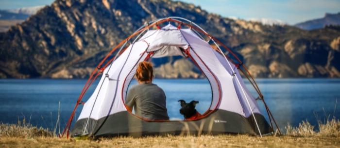Hond met baasje in een tent