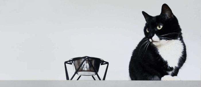 Kattendesign Geometric Bowl