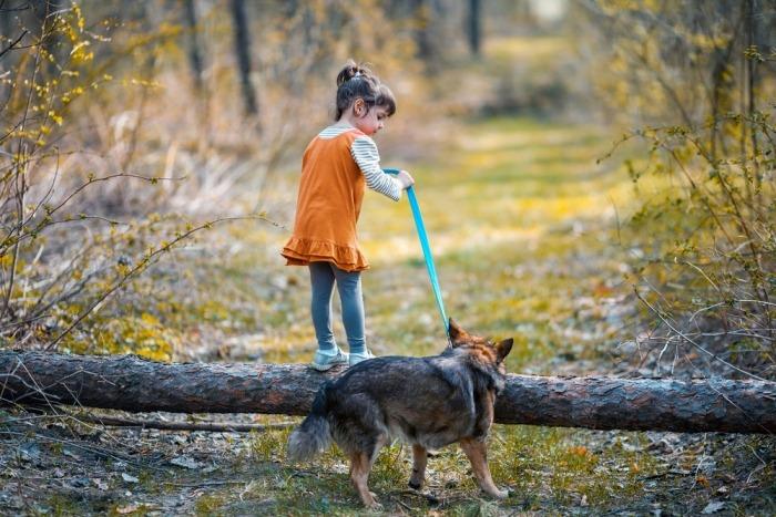 Meisje probeert met hond over omgevallen boom te springen