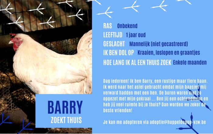 Paspoort Barry de haan