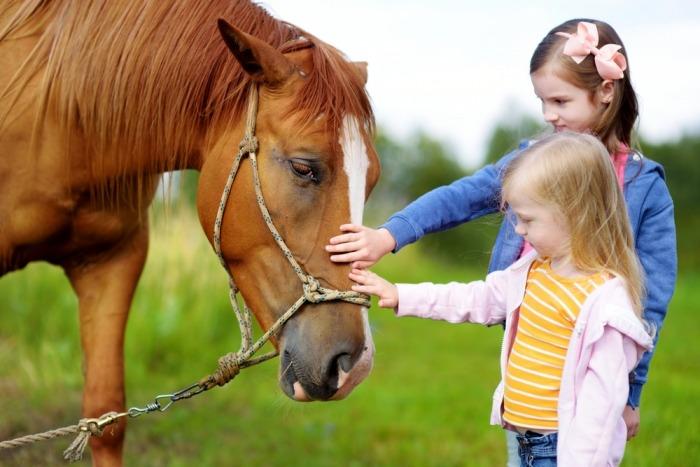 Twee meisjes aaien een bruin paard
