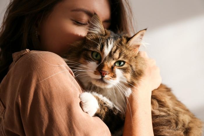 Vrouw knuffelt met Siberische kat