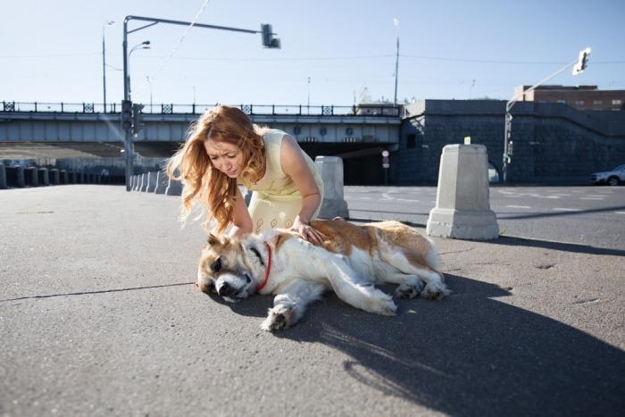 Vrouw naast gewonde hond