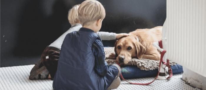 Kindjes bij zieke hond